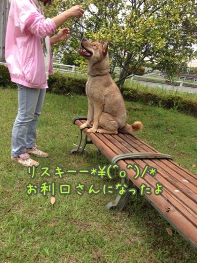 fc2blog_201404271904284c0.jpg