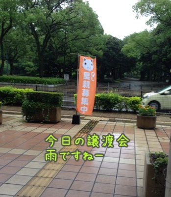 fc2blog_20140623144217e3e.jpg