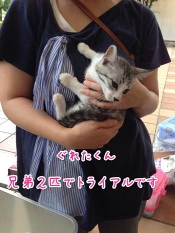 fc2blog_20140629212826440.jpg