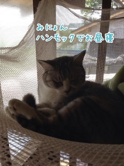 fc2blog_2014072114245892a.jpg