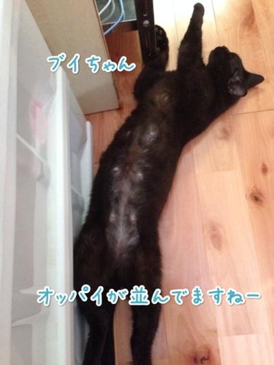 fc2blog_20140721142653a73.jpg