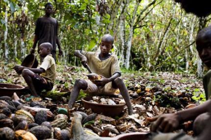 child-labor-cocoa-beans_convert_20140321184814.jpg