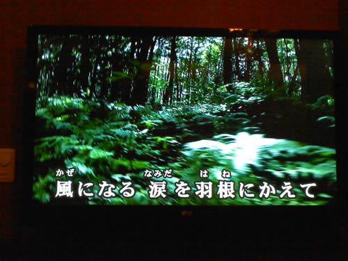 20140727a_6.jpg
