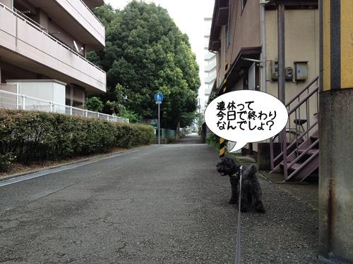 2014081721014700d.jpg