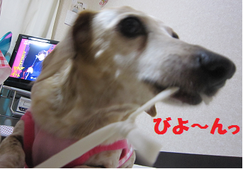 14711p1.png