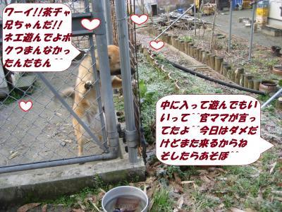 IMG_1646_convert_20140305074227.jpg