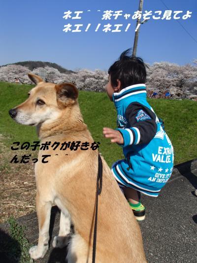 P4020171_convert_20140404083509.jpg