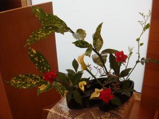 花と講壇12