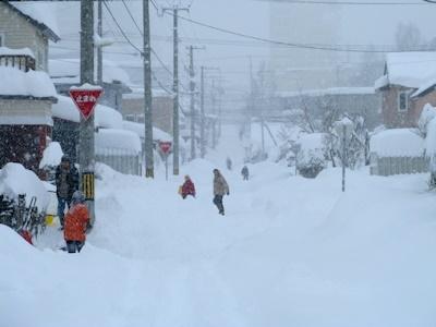 またも大雪