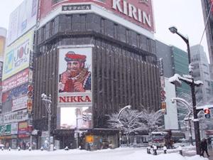 雪のすすきの