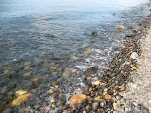 沿線の海岸