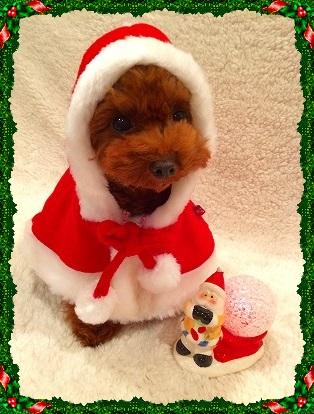 クリスマスマント1