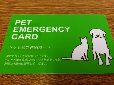 緊急カード