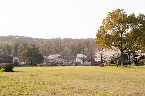 季節の風景-12