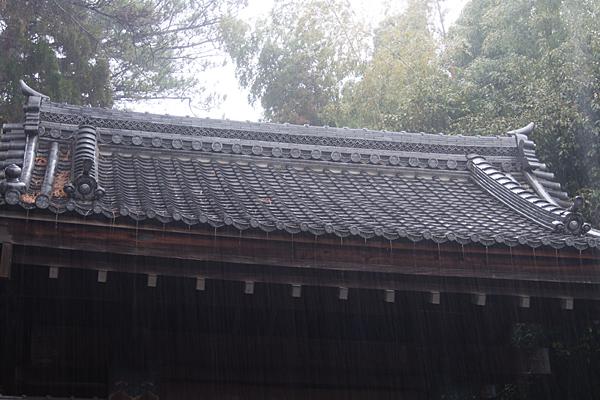 雨の大森-7