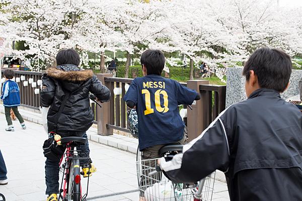 桜風景3-5