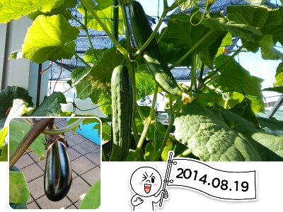 fc2_2014-08-19_07-37-24-899.jpg