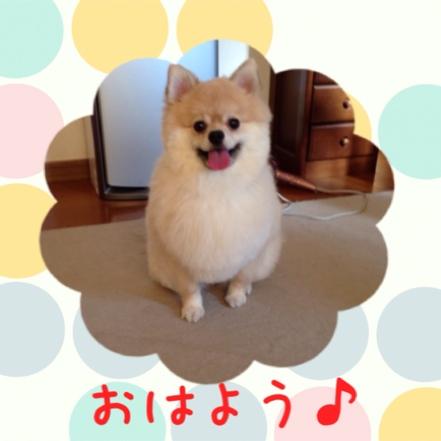 fc2blog_20140728204841199.jpg