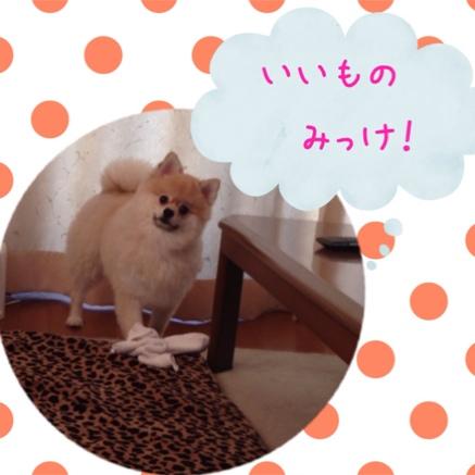 fc2blog_2014072820501419e.jpg