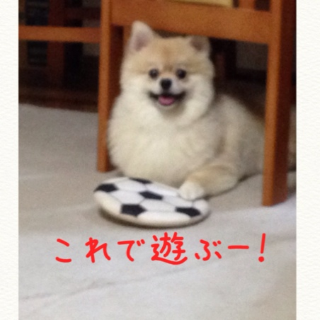 fc2blog_2014072921481450d.jpg