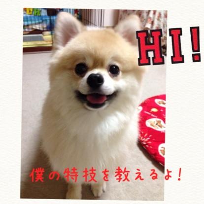 fc2blog_201407312109483e3.jpg