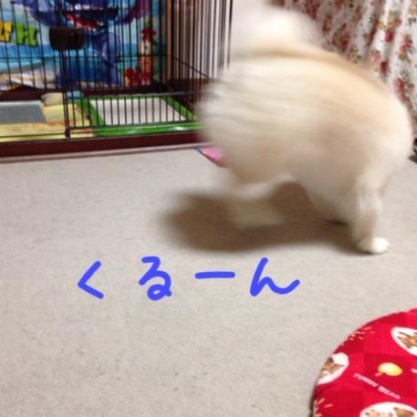 fc2blog_20140731211033e2b.jpg