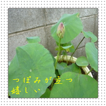 20140706165542566.png
