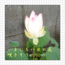 2014070617020113b.png