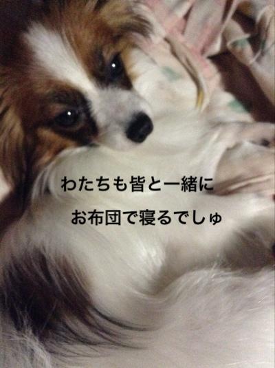 fc2blog_20140727062109388.jpg