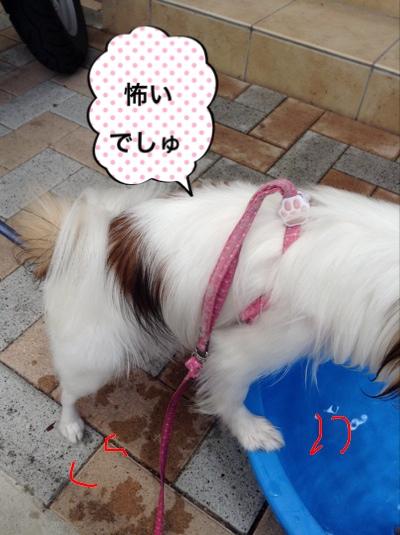 fc2blog_20140727182742378.jpg
