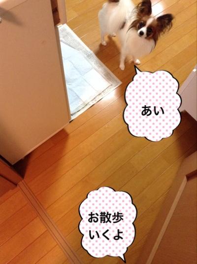 fc2blog_20140828071407098.jpg