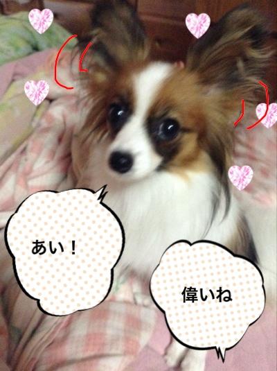 fc2blog_201408300709323b9.jpg