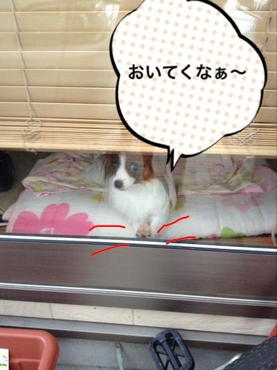 fc2blog_20140831084451baa.jpg