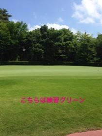 fc2blog_2014070306441648a.jpg