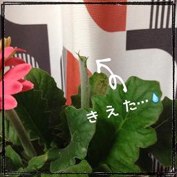 201402192113383fe.jpg