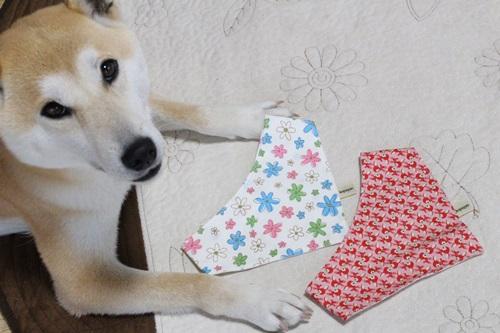 嬉しい贈り物2
