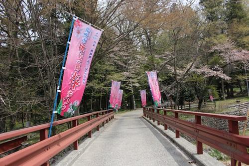 藤垈の滝 (ミズバショウが咲く頃)