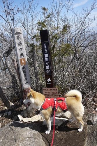 釈迦ヶ岳22