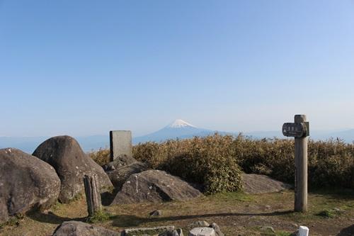 達磨山11