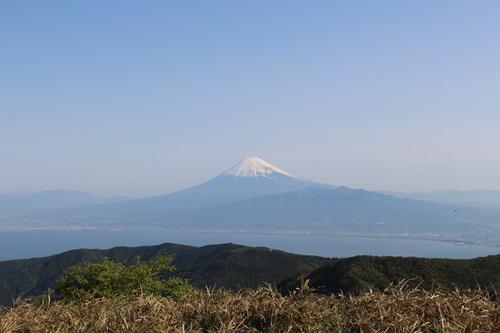 達磨山12