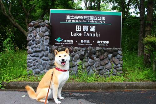 田貫湖(1周3.3km)散策