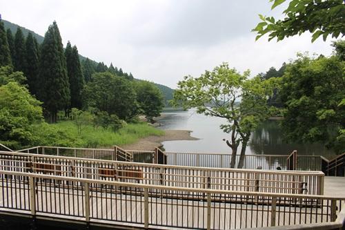 田貫湖10