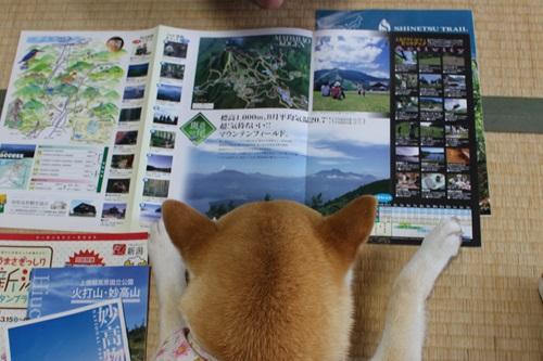 地図とガイドブックで楽しい時間