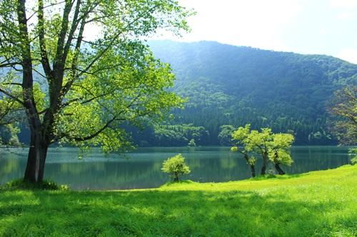 北竜湖11