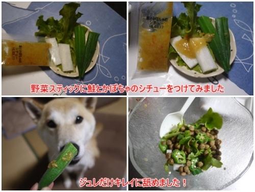 モニター 野菜