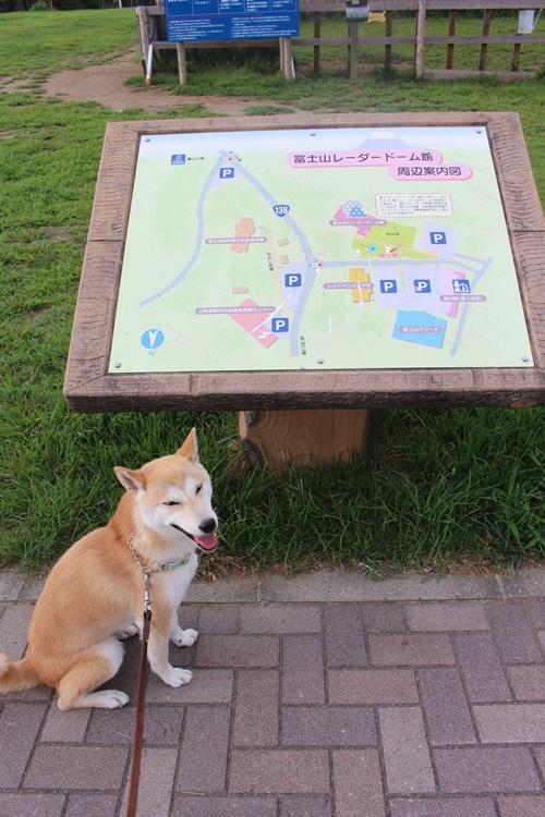道の駅・富士吉田のドッグラン