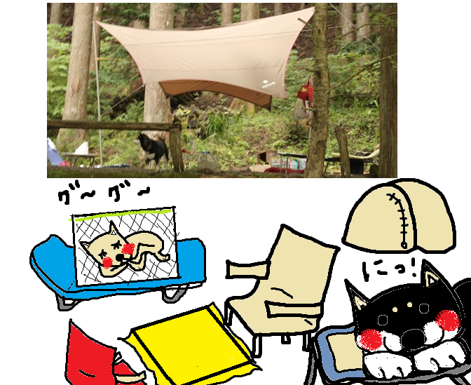 柴吉ちゃんと道志村でキャンプしたよ!(川遊び編)