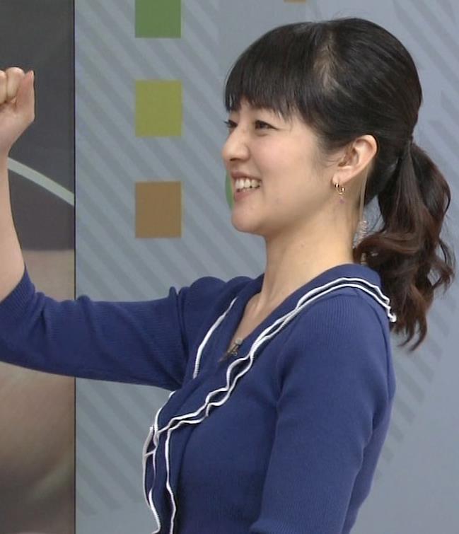 鈴木奈穂子 細身の巨乳アナ