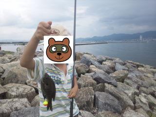 ブルーギル釣り