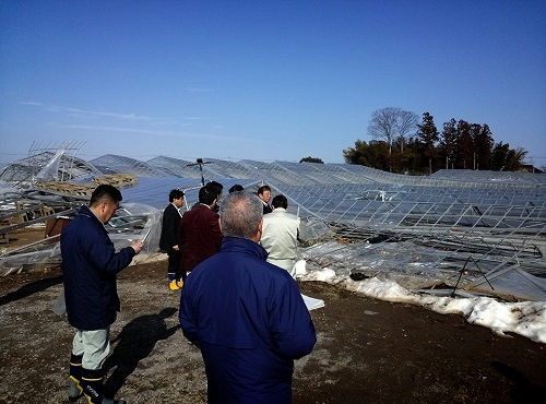 民主党栃木県連≪雪害被害に関する緊急現地調査≫!速報2